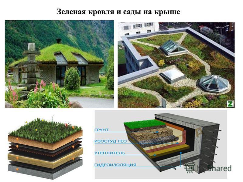 Зеленая кровля и сады на крыше