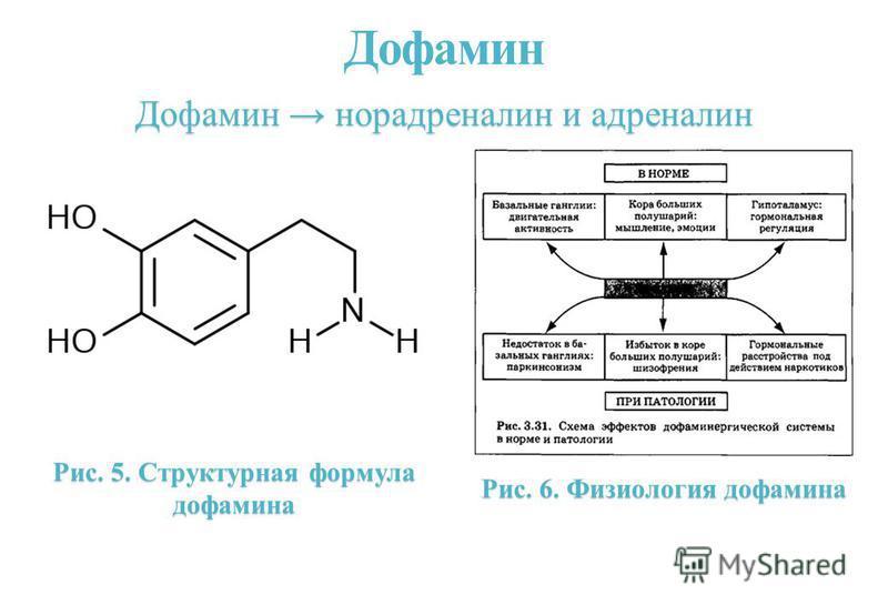 Дофамин Рис. 5. Структурная формула дофамина Дофамин норадреналин и адреналин Рис. 6. Физиология дофамина