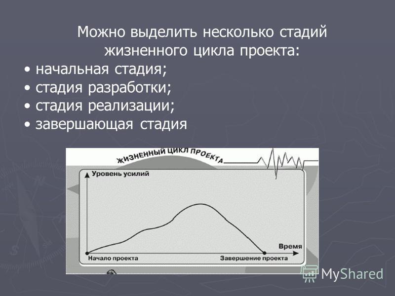 Можно выделить несколько стадий жизненного цикла проекта: начальная стадия; стадия разработки; стадия реализации; завершающая стадия