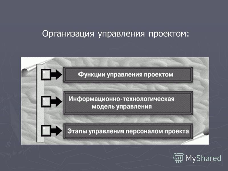 Организация управления проектом: