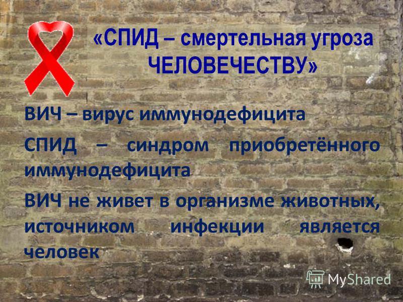 «СПИД – смертельная угроза ЧЕЛОВЕЧЕСТВУ» ВИЧ – вирус иммунодефицита СПИД – синдром приобретённого иммунодефицита ВИЧ не живет в организме животных, источником инфекции является человек