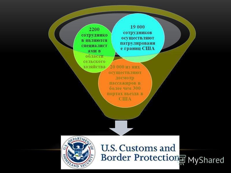 СВР 20 000 из них осуществляют досмотр пассажиров в более чем 300 портах въезда в США 2200 сотрудников являются специалистами в области сельского хозяйства 19 000 сотрудников осуществляют патрулирование границ США