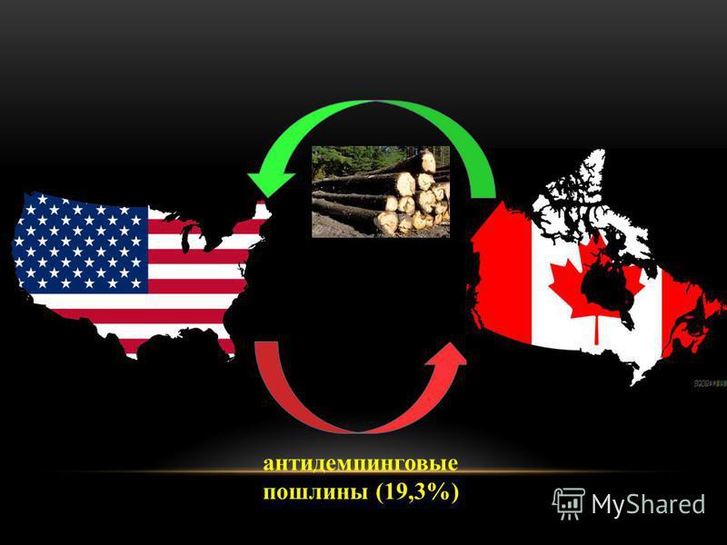 антидемпинговые пошлины (19,3%)