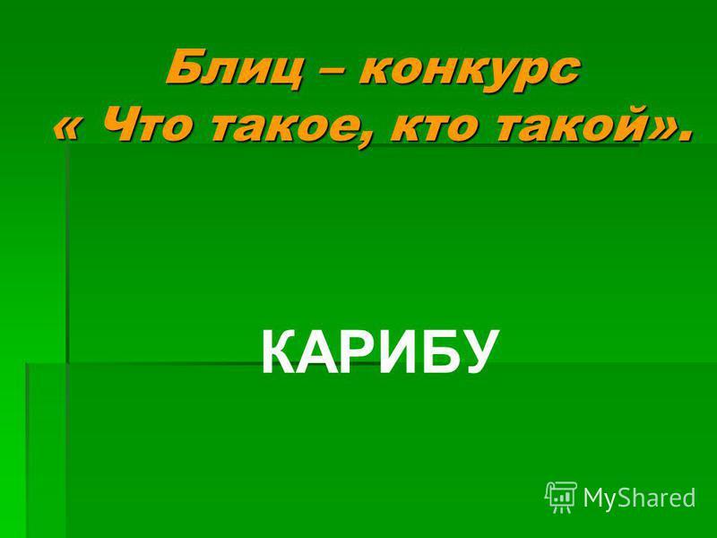 КАРИБУ Блиц – конкурс « Что такое, кто такой».