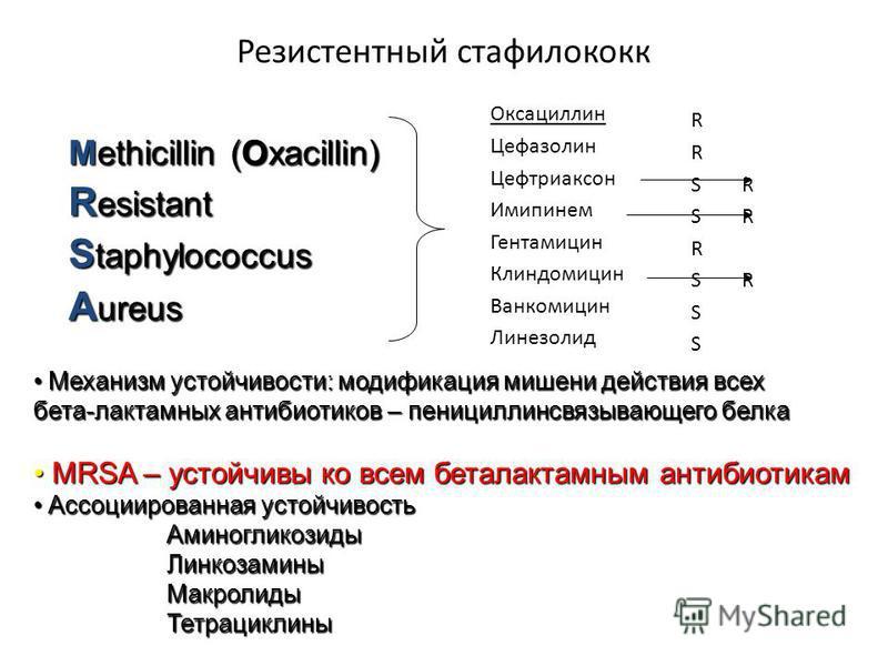 Резистентный стафилококк Оксациллин Цефазолин Цефтриаксон Имипинем Гентамицин Клиндомицин Ванкомицин Линезолид R S R R S R S Methicillin (Oxacillin) R esistant S taphylococcus A ureus Механизм устойчивости: модификация мишени действия всех бета-лакта