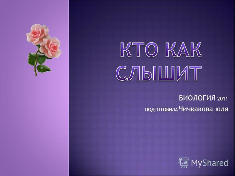 БИОЛОГИЯ 2011 ПОДГОТОВИЛА Чичкакова юля