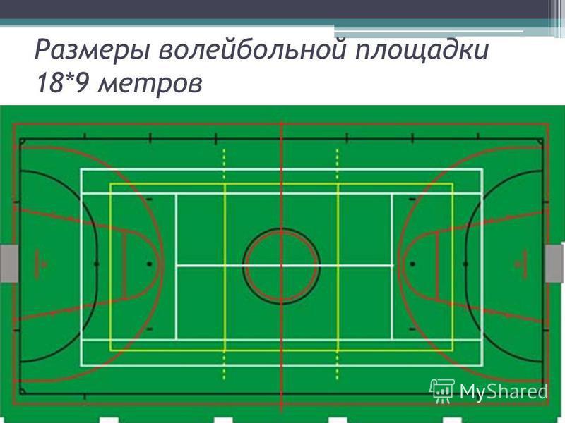 Размеры волейбольной площадки 18*9 метров