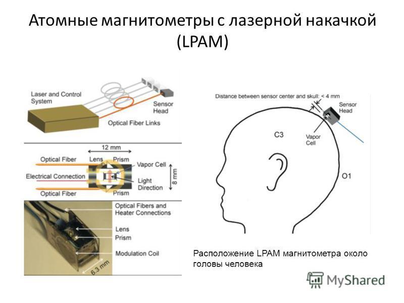 Атомные магнитометры с лазерной накачкой (LPAM) Расположение LPAM магнитометра около головы человека