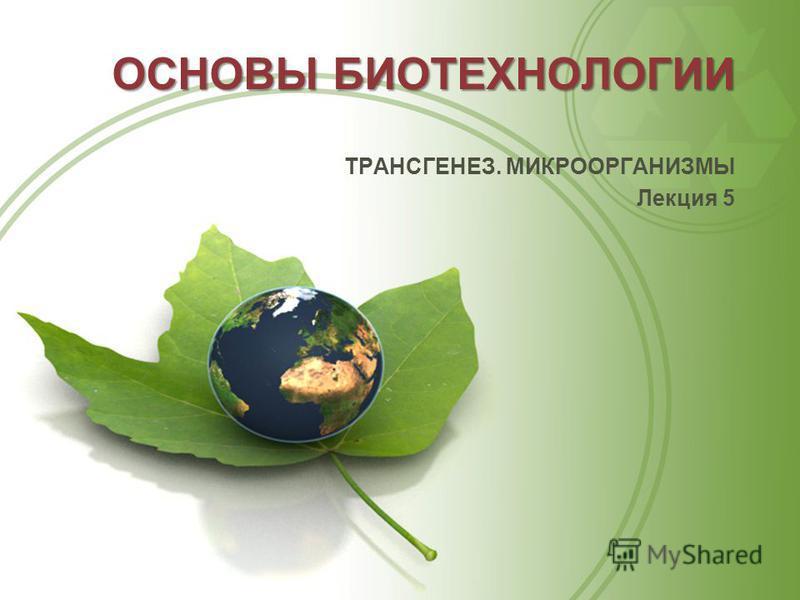 ОСНОВЫ БИОТЕХНОЛОГИИ ТРАНСГЕНЕЗ. МИКРООРГАНИЗМЫ Лекция 5