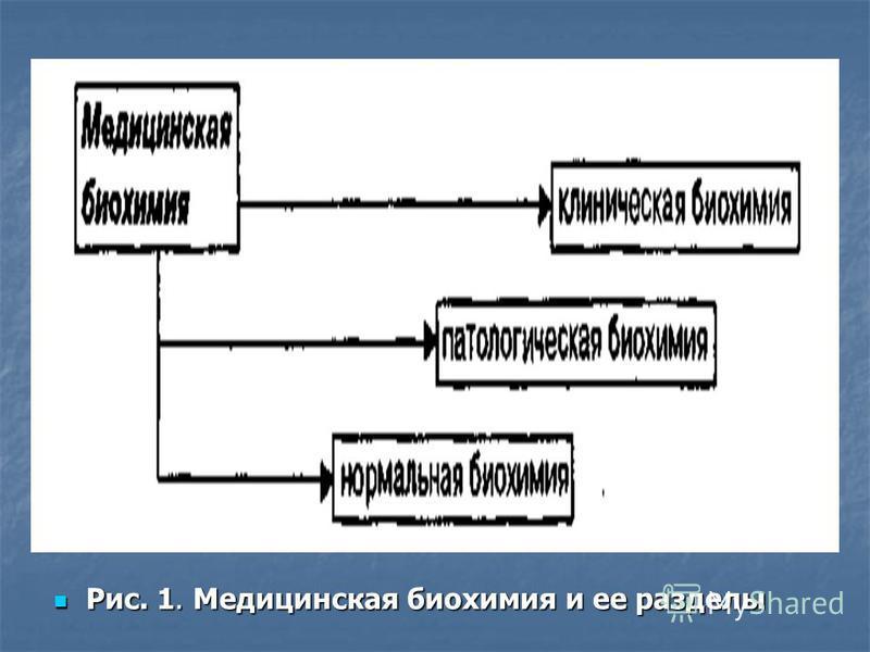 Рис. 1. Медицинская биохимия и ее разделы Рис. 1. Медицинская биохимия и ее разделы