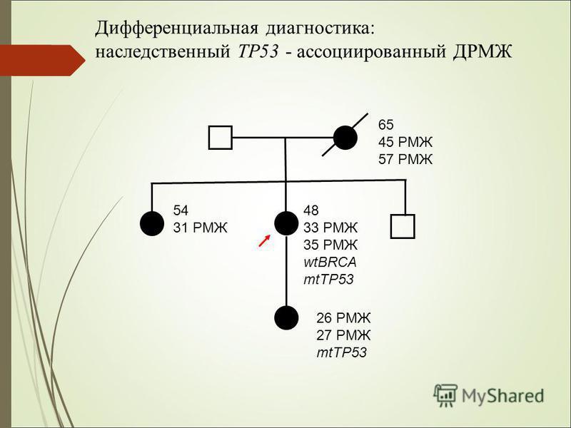 65 45 РМЖ 57 РМЖ 54 31 РМЖ 48 33 РМЖ 35 РМЖ wtBRCA mtTP53 26 РМЖ 27 РМЖ mtTP53 Дифференциальная диагностика: наследственный TP53 - ассоциированный ДРМЖ