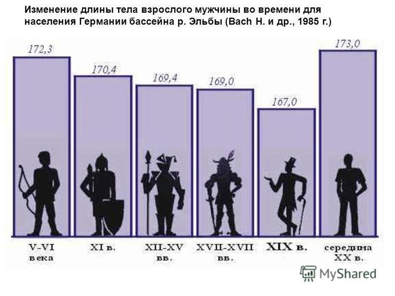 Изменение длины тела взрослого мужчины во времени для населения Германии бассейна р. Эльбы (Bach Н. и др., 1985 г.)