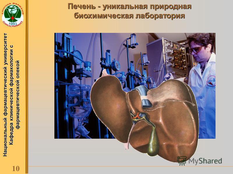 Национальный фармацевтический университет Кафедра клинической фармакологии с фармацевтической опекой 10 Печень - уникальная природная биохимическая лаборатория