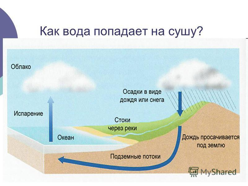 Как вода попадает на сушу?
