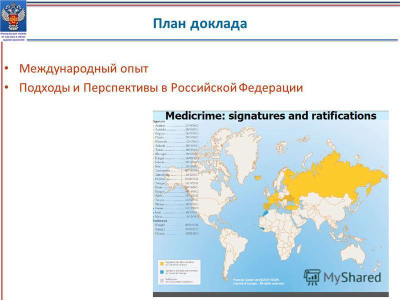 План доклада Международный опыт Подходы и Перспективы в Российской Федерации 2