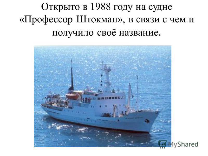 Открыто в 1988 году на судне «Профессор Штокман», в связи с чем и получило своё название.