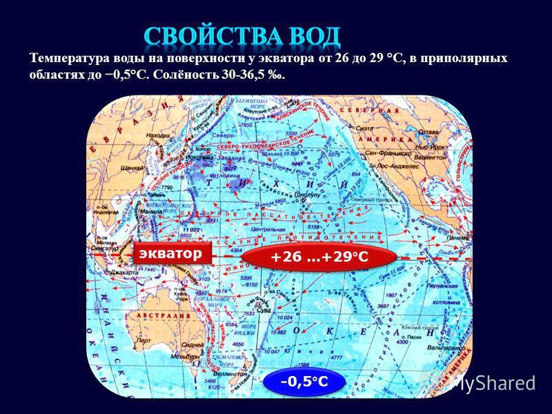 Температура воды на поверхности у экватора от 26 до 29 °C, в приполярных областях до 0,5°C. Солёность 30-36,5. экватор +26 …+29°С -0,5°С
