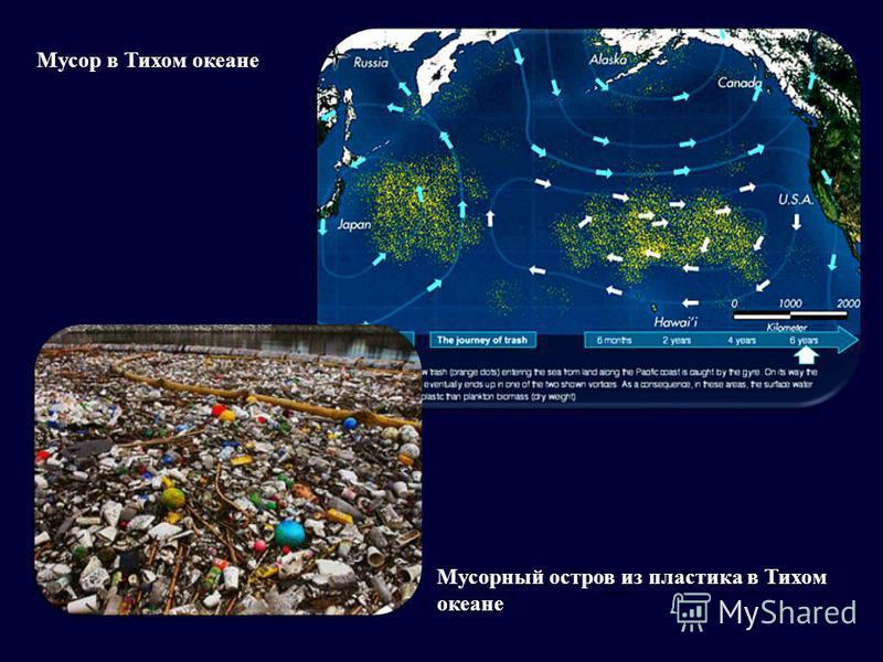Мусор в Тихом океане Мусорный остров из пластика в Тихом океане
