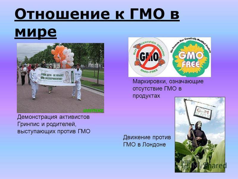 Отношение к ГМО в мире Маркировки, означающие отсутствие ГМО в продуктах Демонстрация активистов Гринпис и родителей, выступающих против ГМО Движение против ГМО в Лондоне