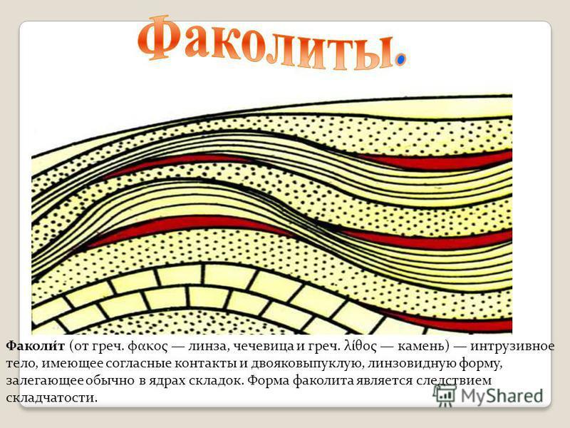 Факоли́т (от греч. φακος линза, чечевица и греч. λίθος камень) интрузивное тело, имеющее согласные контакты и двояковыпуклую, линзовидную форму, залегающее обычно в ядрах складок. Форма факолита является следствием складчатости.