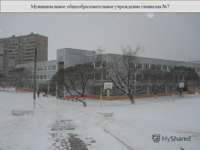 Муниципальное общеобразовательное учреждение гимназия 7