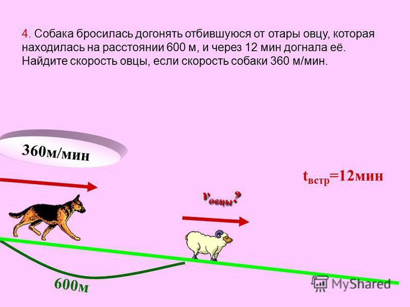 360 м/мин 600 м t встр =12 мин v овцы ? 4. Собака бросилась догонять отбившуюся от отары овцу, которая находилась на расстоянии 600 м, и через 12 мин догнала её. Найдите скорость овцы, если скорость собаки 360 м/мин.