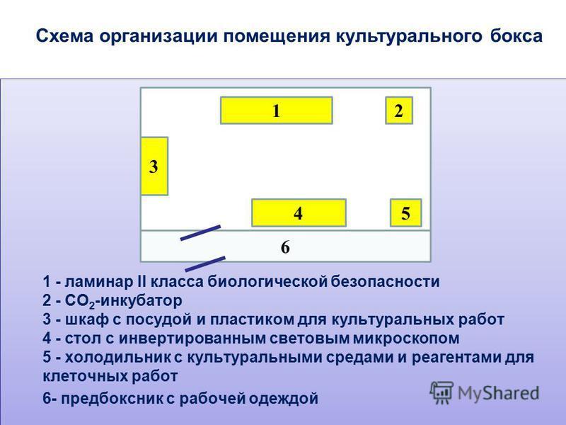 Схема организации помещения культуральнего бокса 6 12 3 45 1 - ламинар II класса биологической безопасности 2 - СО 2 -инкубатор 3 - шкаф с посудой и пластиком для культуральных работ 4 - стол с инвертированным световым микроскопом 5 - холодильник с к