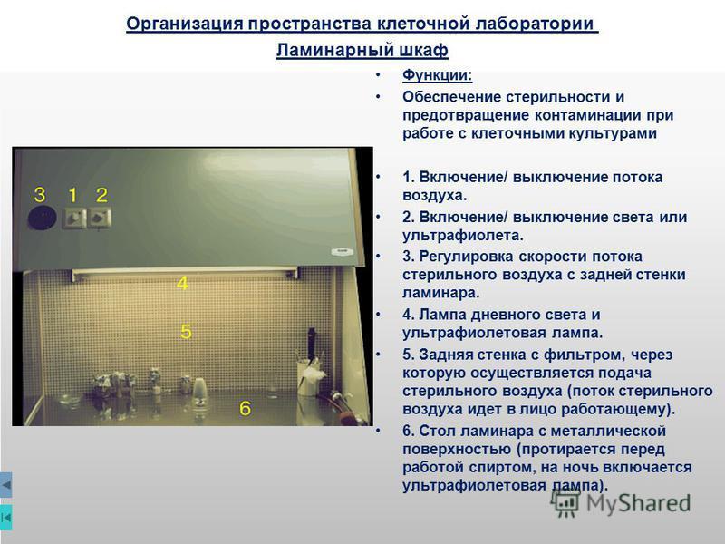Организация пространства клеточной лаборатории Ламинарный шкаф Функции: Обеспечение стерильности и предотвращение контаминации при работе с клеточными культурами 1. Включение/ выключение потока воздуха. 2. Включение/ выключение света или ультрафиолет