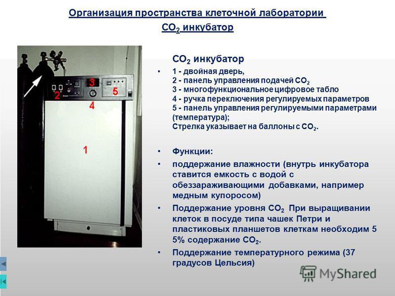 СО 2 инкубатор 1 - двойная дверь, 2 - панель управления подачей СО 2 3 - мнегофункциональное цифровое табло 4 - ручка переключения регулируемых параметров 5 - панель управления регулируемыми параметрами (температура); Cтрелка указывает на баллоны с С
