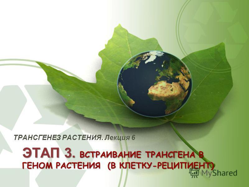 ЭТАП 3. ВСТРАИВАНИЕ ТРАНСГЕНА В ГЕНОМ РАСТЕНИЯ (В КЛЕТКУ-РЕЦИПИЕНТ) ТРАНСГЕНЕЗ РАСТЕНИЯ. Лекция 6