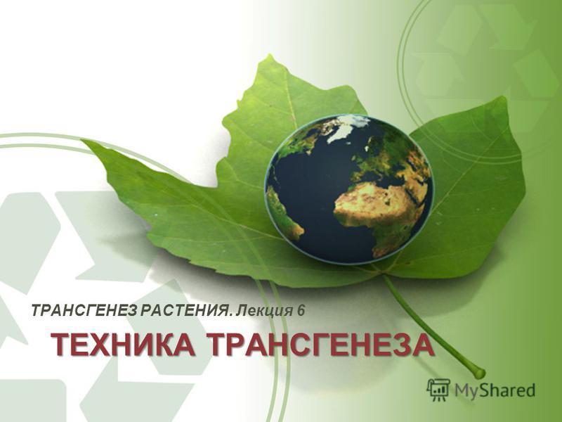 ТЕХНИКА ТРАНСГЕНЕЗА ТРАНСГЕНЕЗ РАСТЕНИЯ. Лекция 6