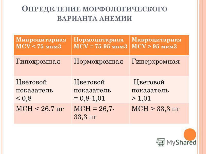 О ПРЕДЕЛЕНИЕ МОРФОЛОГИЧЕСКОГО ВАРИАНТА АНЕМИИ Микроцитарная MCV < 75 мкм 3 Нормоцитарная MCV = 75-95 мкм 3 Макроцитарная MCV > 95 мкм 3 Гипохромная НормохромнаяГиперхромная Цветовой показатель < 0,8 Цветовой показатель = 0,8-1,01 Цветовой показатель