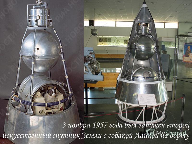 3 ноября 1957 год. Запущен первый в мире искусственный спутник Земли с живым существом. На его борту находилась собака Лайка. 3 ноября 1957 года был запущен второй искусственный спутник Земли с собакой Лайкой на борту