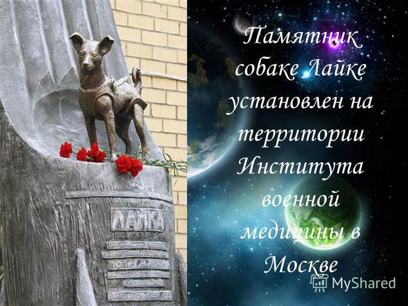 Памятник собаке Лайке установлен на территории Института военной медицины в Москве