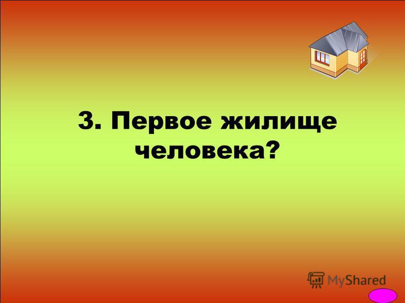 3. Первое жилище человека?