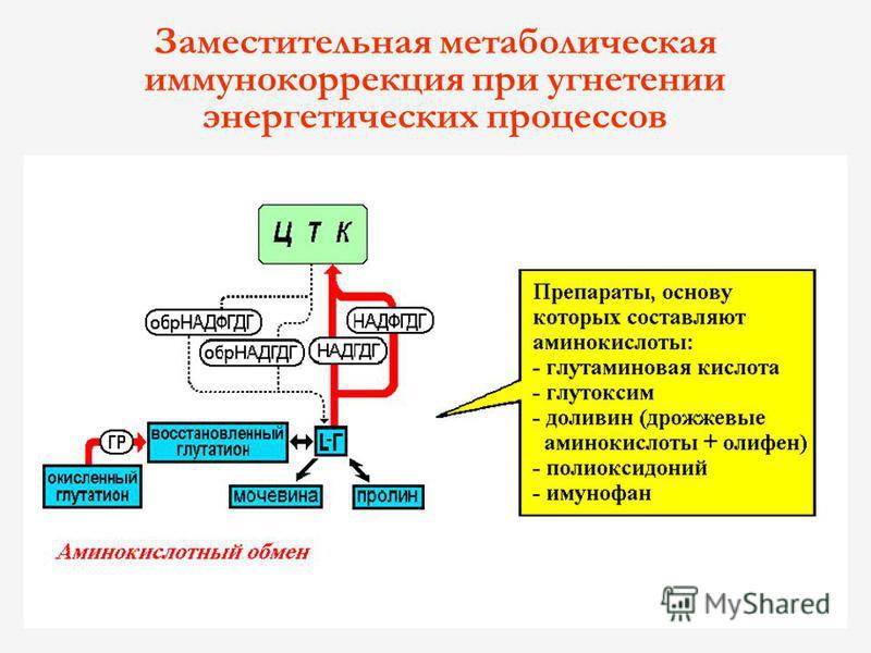 Заместительная метаболическая иммунокоррекция при угнетении энергетических процессов