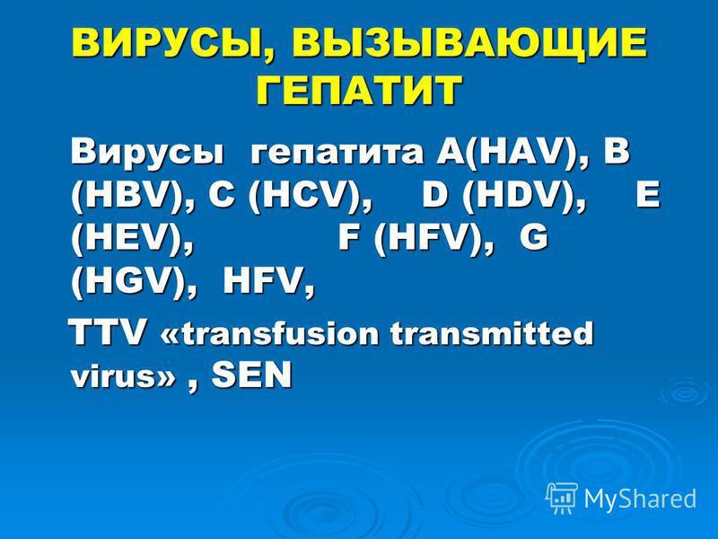 ВИРУСЫ, ВЫЗЫВАЮЩИЕ ГЕПАТИТ Вирусы гепатита А(HAV), B (HBV), C (HCV), D (HDV), E (HEV), F (HFV), G (HGV), HFV, Вирусы гепатита А(HAV), B (HBV), C (HCV), D (HDV), E (HEV), F (HFV), G (HGV), HFV, TTV «transfusion transmitted virus», SEN TTV «transfusion