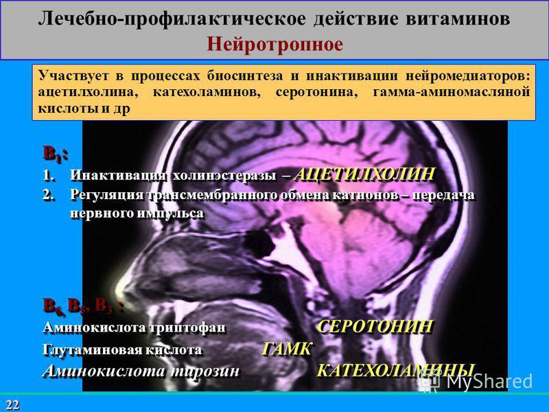 22 Лечебно-профилактическое действие витаминов Нейротропное Участвует в процессах биосинтеза и инактивации нейромедиаторов: ацетилхолина, катехоламинов, серотонина, гамма-аминомасляной кислоты и др В 1 : 1. Инактивация холинэстеразы – АЦЕТИЛХОЛИН 2.