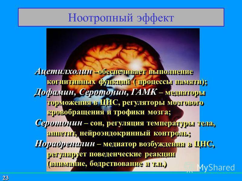 23 Ноотропный эффект Ацетилхолин –обеспечивает выполнение когнитивных функций ( процессы памяти); Дофамин, Серотонин, ГАМК – медиаторы торможения в ЦНС, регуляторы мозгового кровобращения и трофики мозга; Серотонин – сон, регуляция температуры тела,