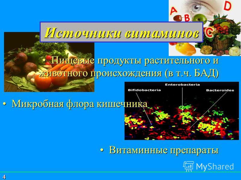 4 Источники витаминов Пищевые продукты растительного и животного происхождения (в т.ч. БАД)Пищевые продукты растительного и животного происхождения (в т.ч. БАД) Микробная флора кишечника Микробная флора кишечника Витаминные препараты Витаминные препа