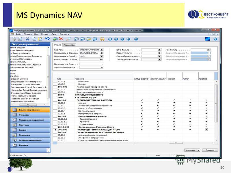 MS Dynamics NAV 30