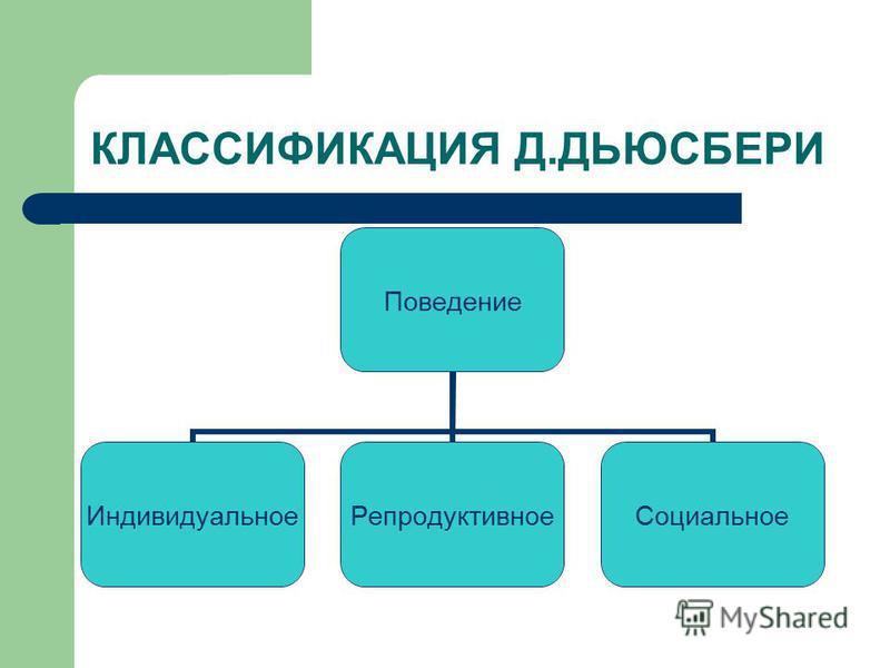 КЛАССИФИКАЦИЯ Д.ДЬЮСБЕРИ Поведение Индивидуальное РепродуктивноеСоциальное