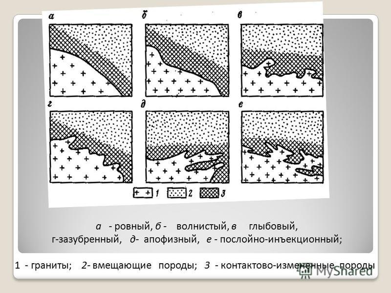 а - ровный, б - волнистый, в глыбовый, г-зазубренный, д- апофизный, е - послойно-инъекционный; 1 - граниты; 2- вмещающие породы; 3 - контактово-измененные породы