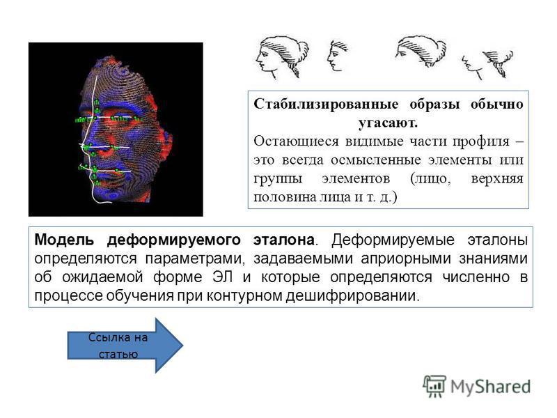 Стабилизированные образы обычно угасают. Остающиеся видимые части профиля – это всегда осмысленные элементы или группы элементов (лицо, верхняя половина лица и т. д.) Ссылка на статью Модель деформируемого эталона. Деформируемые эталоны определяются