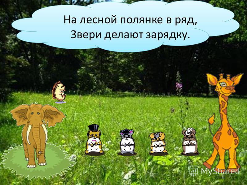 На лесной полянке в ряд, Звери делают зарядку.