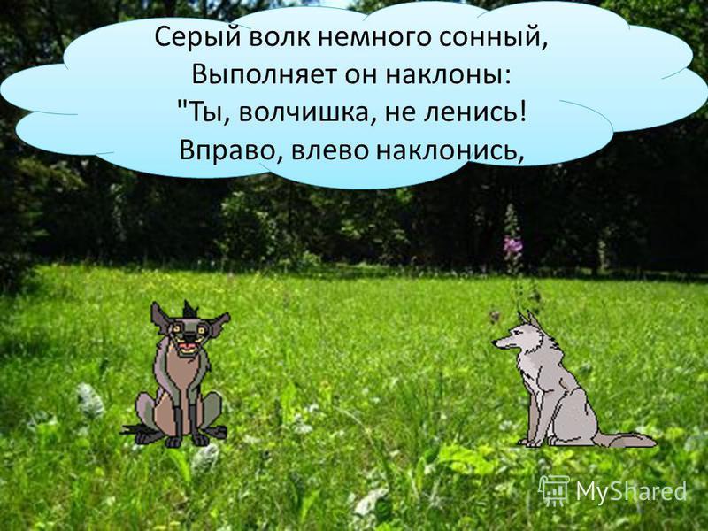 Серый волк немного сонный, Выполняет он наклоны: Ты, волчишка, не ленись! Вправо, влево наклонись,