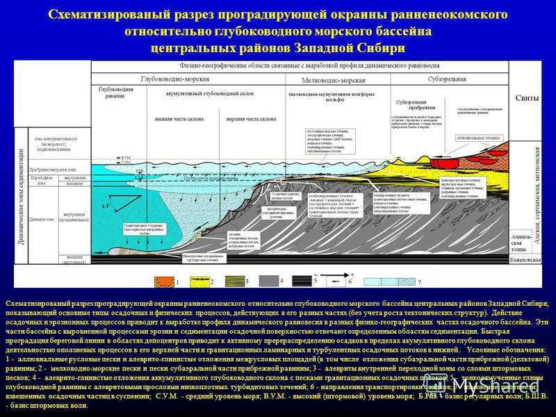 6 Схематизированый разрез проградирующей окраины ранненеокомского относительно глубоководного морского бассейна центральных районов Западной Сибири Схематизированый разрез проградирующей окраины ранненеокомского относительно глубоководного морского б