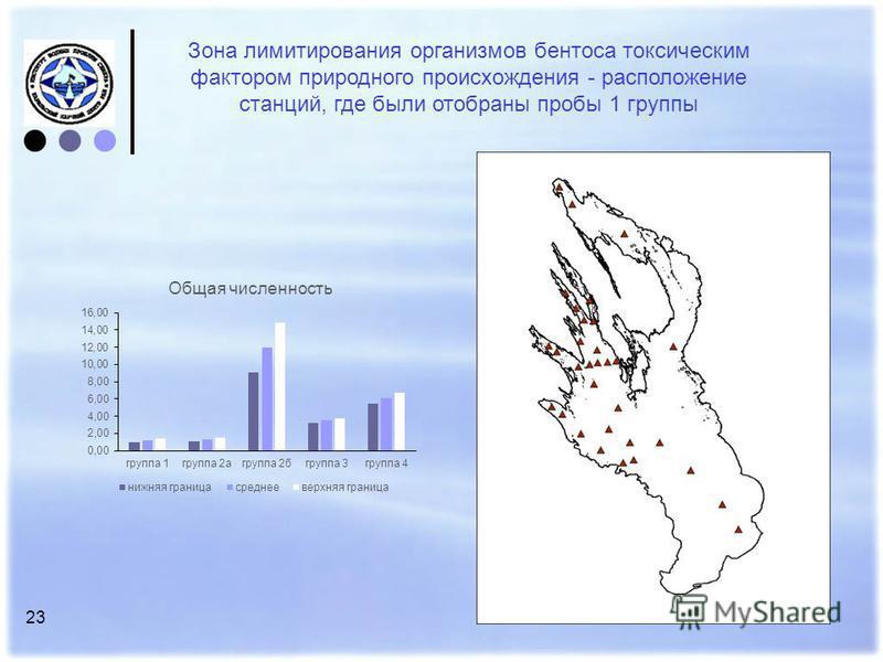 23 Зона лимитирования организмов бентоса токсическим фактором природного происхождения - расположение станций, где были отобраны пробы 1 группы