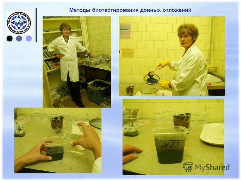 Методы биотестирования донных отложений