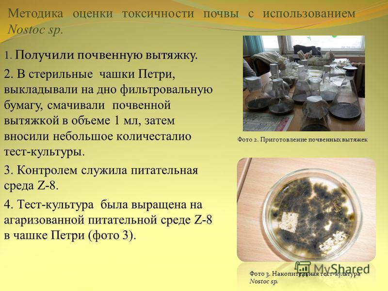 Методика оценки токсичности почвы с использованием Nostoc sp. 1. Получили почвенную вытяжку. 2. В cтepильныe чашки Пeтpи, выклaдывaли на дно фильтpoвaльную бумагу, cмaчивaли почвeннoй вытяжкой в объеме 1 мл, зaтeм внocили небoльшoe кoличecталиo тecт-